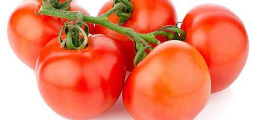domates meyve mi yoksa sebze mi, domates nasıl bir bitki, domatesin bulunduğu gıda kategorisi