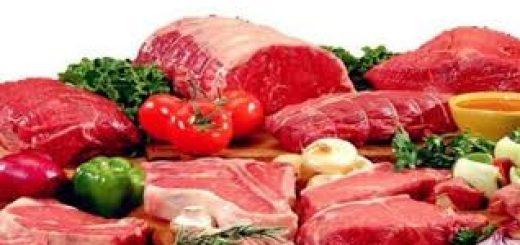 helal gıda denetimi, helal gıda denetimi yapımı, helal gıda denetimi nasıl yapılır